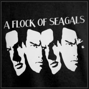 A Flock Of Seagals - 1980s Era Entertainment in Kennesaw, Georgia