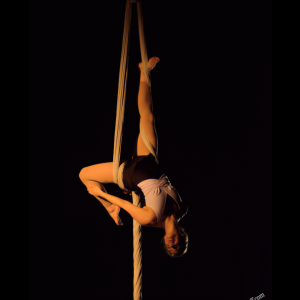 Buffalo Aerial Dance - Aerialist in Buffalo, New York