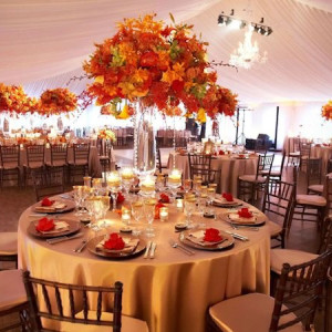 A Plus Party Specialists LLC - Waitstaff / Holiday Party Entertainment in Glenwood, New Jersey