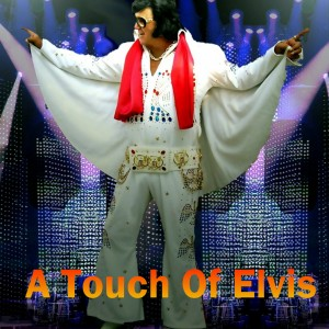 A Touch Of Elvis - Elvis Impersonator in Castroville, Texas
