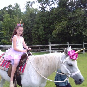 A Wind in the Woods - Pony Party in Chagrin Falls, Ohio