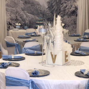 Accent Create Events - Party Decor / Backdrops & Drapery in Clayton, North Carolina