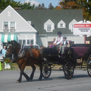 Adirondack Carriage - Horse Drawn Carriage in Chestertown, New York
