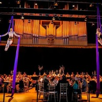 Aerial Angels - Circus Entertainment / Balancing Act in Kalamazoo, Michigan
