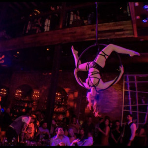 Aerial Bartender and Performer - Aerialist in Dallas, Texas