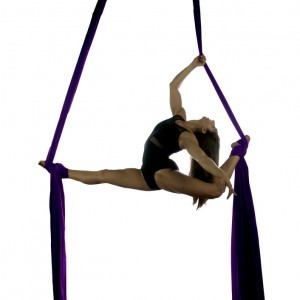 Aerial Dance Performance - Aerialist / 1920s Era Entertainment in Long Beach, California