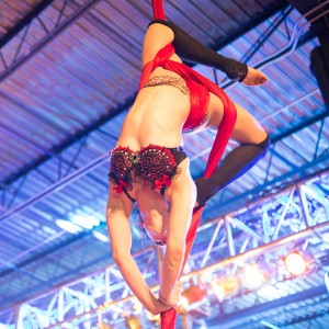 Aerial Entertainment - Aerialist in Philadelphia, Pennsylvania