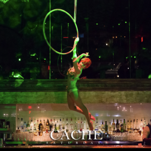 Aerial Kat - Aerialist / Burlesque Entertainment in Washington, District Of Columbia