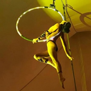 Aerial Cosmic Hoop - Aerialist / Circus Entertainment in Nokomis, Florida