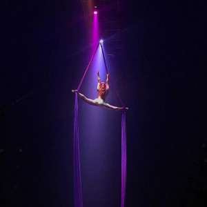 Aerial Silks - Aerialist / Traveling Circus in Greenville, Texas