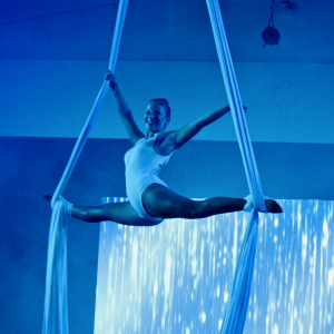 Aerialist and Trapeze Artist - Aerialist in Marthas Vineyard, Massachusetts