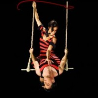 Aerobella Trapeze - Aerialist / Trapeze Artist in Brooklyn, New York