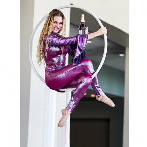 Air Lindsay LLC - Aerialist in Miami, Florida