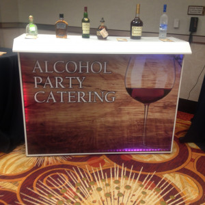 Alcohol Party Catering Inc - Bartender / Holiday Party Entertainment in German Valley, Illinois