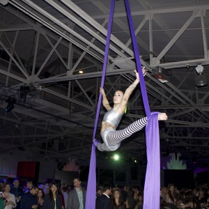 Alexa Kay - Aerialist in San Francisco, California