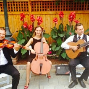 Alexandra NYC Cellist and Strings - Classical Duo / Violinist in New York City, New York