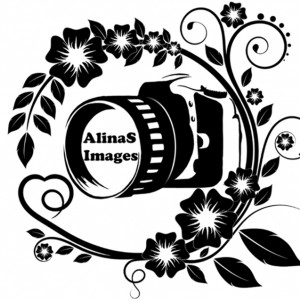 AlinaS Images - Photographer in Orlando, Florida