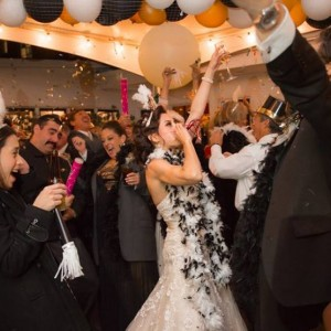 All Occasions Entertainment - Wedding DJ / DJ in Santa Cruz, California