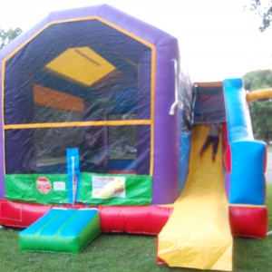 All Pumped Up LLC - Party Inflatables in Eagan, Minnesota