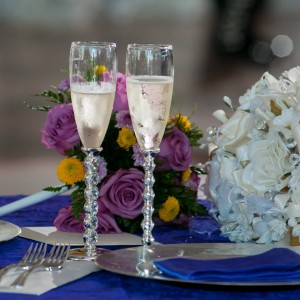 """All You Need""-event services - Linens/Chair Covers / Bridal Gowns & Dresses in Chicago, Illinois"