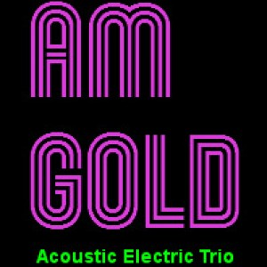 Am Gold Music Group - Easy Listening Band in Statesville, North Carolina