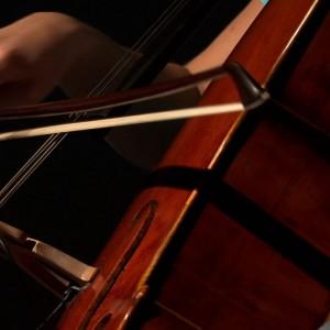 Amateur Cellist