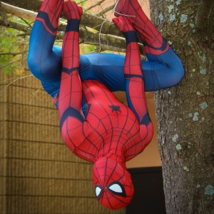Amazing Spider-J - Superhero Party in Abington, Massachusetts
