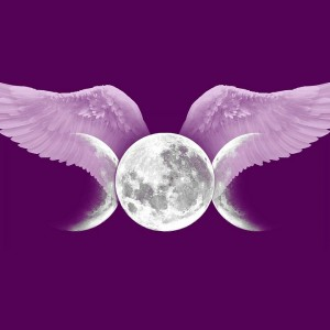 Amber Silver Moon - Tarot Reader in Charlotte, North Carolina