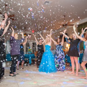 Amelia Island DJ & Audio - Mobile DJ / Wedding DJ in Fernandina Beach, Florida
