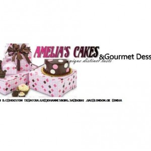 Amelia's Cakes - Cake Decorator / Caterer in Washington, District Of Columbia