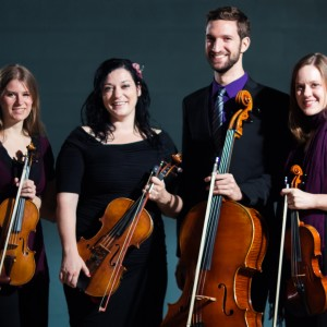 Amethyst Ensemble - String Quartet in Chicago, Illinois