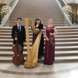 Amethyst Trio - String Trio / Harpist in San Francisco, California