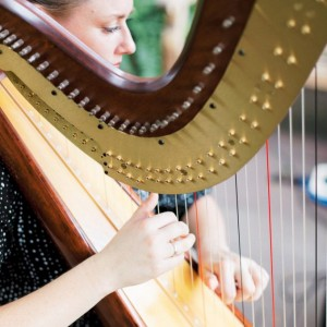 Andrea Blanchfield, Harpist - Harpist in Raleigh, North Carolina