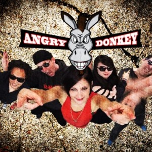 Angry Donkey - Cover Band / Heavy Metal Band in Hermosa Beach, California