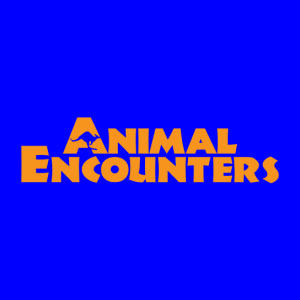Animal Encounters - Petting Zoo / Reptile Show in Redmond, Washington