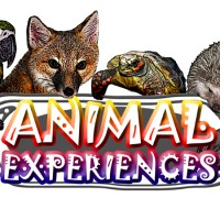 Animal Experiences - Animal Entertainment in Pine Bush, New York