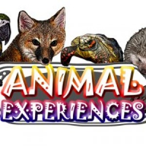 Animal Experiences - Animal Entertainment / Educational Entertainment in Union Mills, North Carolina