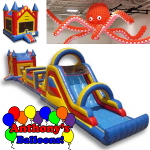 Anthony's Balloons, LLC - Party Inflatables / Outdoor Party Entertainment in Chicago, Illinois