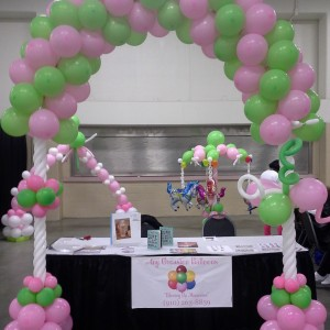 Any Occasion Balloons - Balloon Decor / Princess Party in Fayetteville, North Carolina