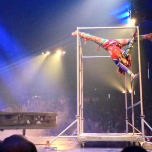 Professional Acrobats: Parkour, Freerunning, Circus, Dance, Pole, etc. - Acrobat in Denver, Colorado