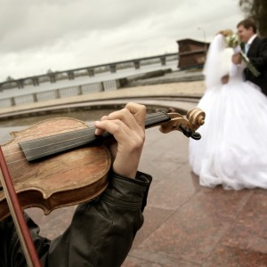Appleton Area Wedding Trio - String Quartet / Wedding Entertainment in Appleton, Wisconsin