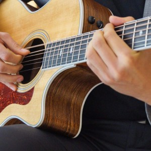 AQ Entertainment - Singing Guitarist / Wedding Musicians in Santa Clara, California