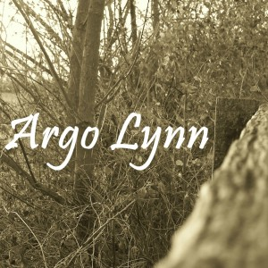 Argo Lynn - Acoustic Band / Americana Band in Georgetown, Kentucky