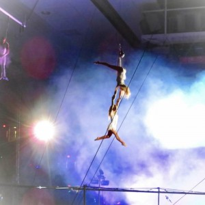 Aerialists- Professional Lyra, Trapeze, Web, Silks and more - Aerialist / Circus Entertainment in Nokomis, Florida