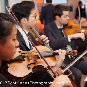 Aristo Strings NYC - String Quartet / Cellist in New York City, New York
