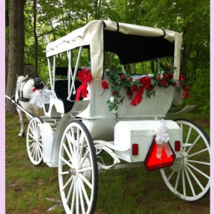 Aristocratic Wedding Carriages - Horse Drawn Carriage / Wedding Services in Van Meter, Iowa