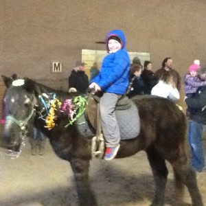 Arram Dawn Farm  pony parties - Pony Party in Bordentown, New Jersey