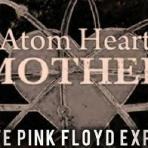 Atom Heart Mother-Music and Madness of Pink Floyd - Pink Floyd Tribute Band / Classic Rock Band in Bloomington, Indiana