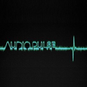 Audio Pulse - Classic Rock Band in Danville, Indiana