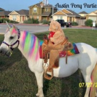 Austin Pony Parties - Pony Party in Austin, Texas